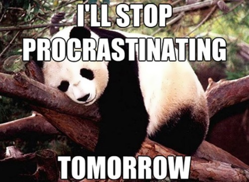 Is procrastination your way of life?