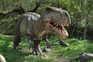 Tyrannosaurus rex - tyrant lizard king