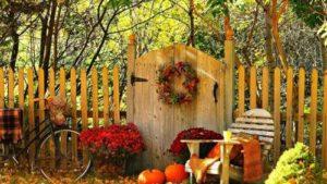 Autumn – time for harvest