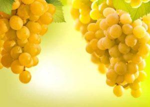 Tasty grape