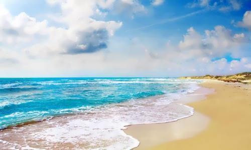 Wonderful ocean