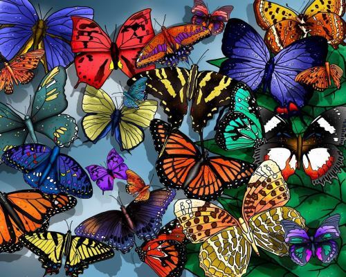 Butterflies – flying flowers