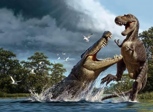 Crocodile vs Rex