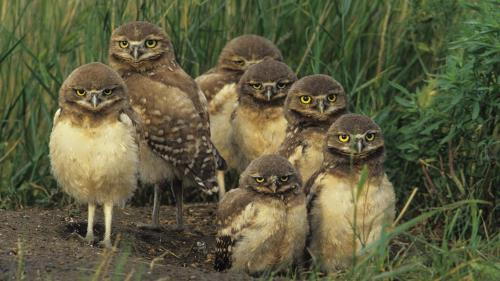 Hey, we are watching you!