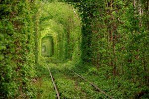 Green railroad