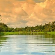 Amazon River - Rainforest River
