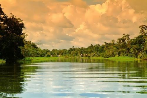 Amazon River - Rainforest River