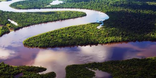 Pretty Amazon
