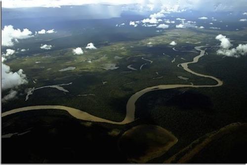 Beautiful Amazon