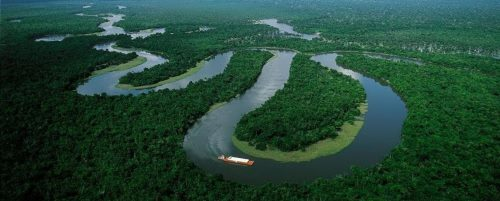 Picturesque Amazon