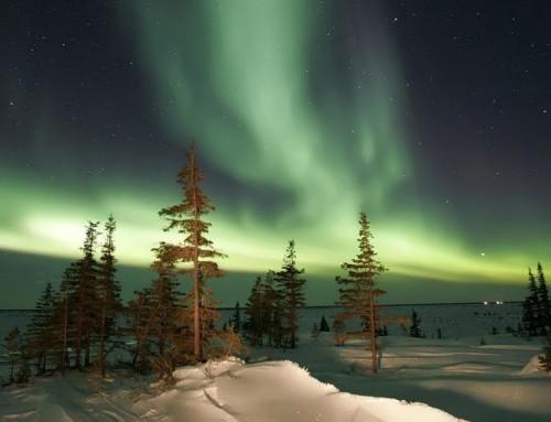 Magnificent lights