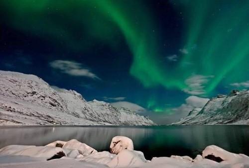 Amazing lights