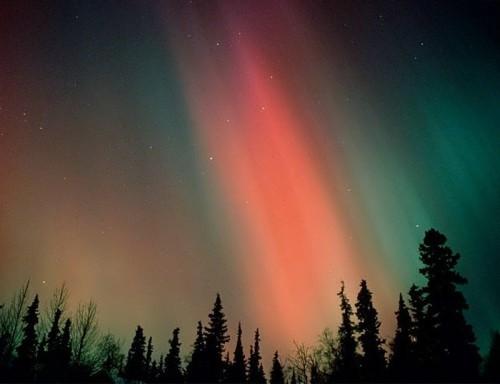 Charming lights