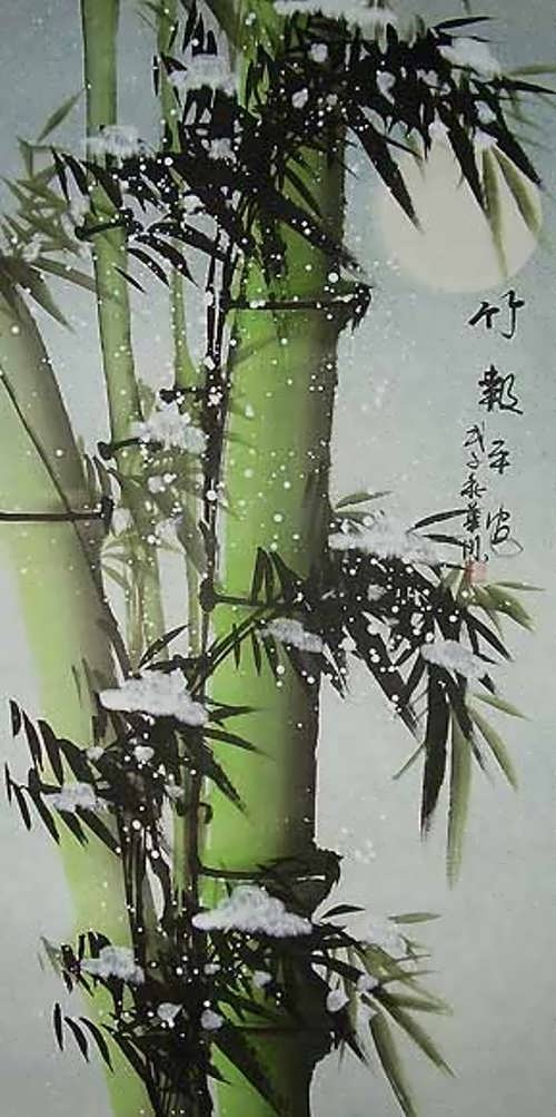 Gorgeous bamboo