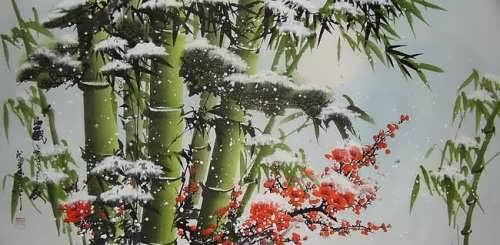 Charming bamboo