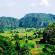 Amazing Congo