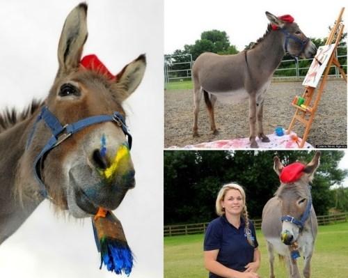 Donkey Patty and her teacher Vicky Greenslade