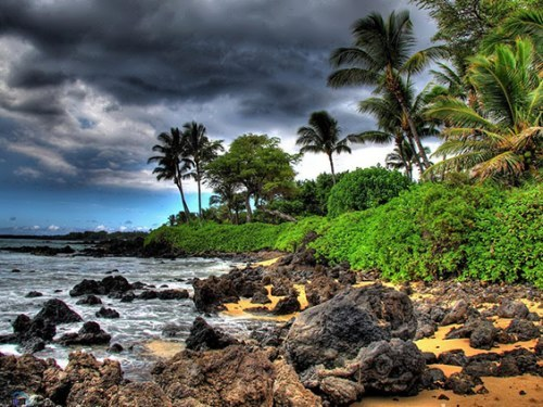 Lovely Hawaii