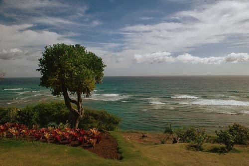 Interesting Hawaii