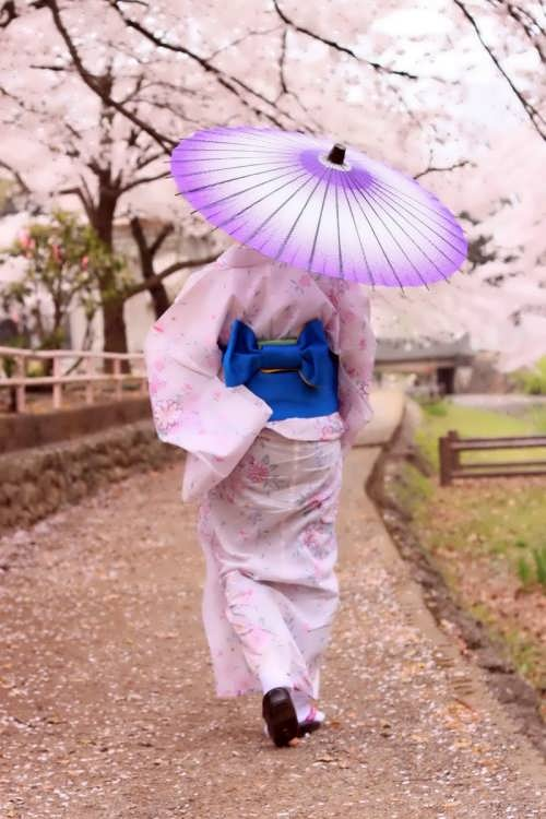 Charming Japan