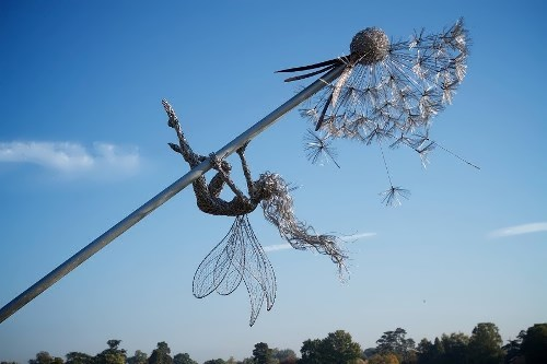 Little fairy and dandelion