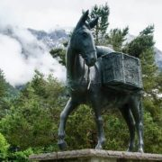 Monument to Donkey