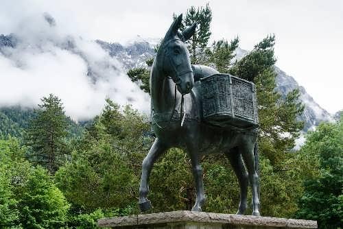 Monument to Donkey