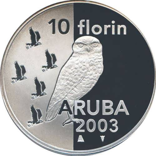 Owl Aruba