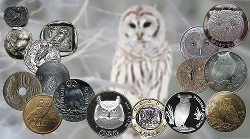 Owl on coins