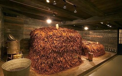 Tobacco Museum