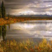 Attractive Alaska