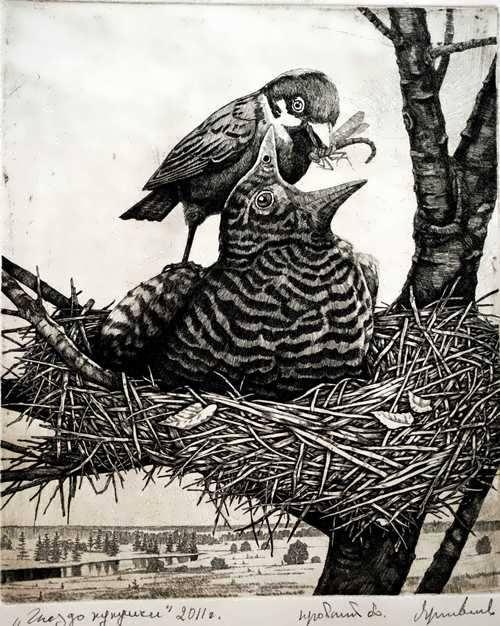 Anatoly Yaroslavtsev. Cuckoo's Nest