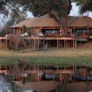 Stunning Botswana