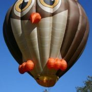 Cute owl balloon