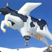 Giant floating cow