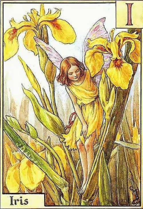 Illustration to the children's alphabet. Cicely Mary Barker