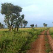 Interesting Uganda