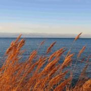 Magnificent Issyk-Kul