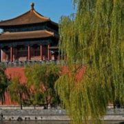 Magnificent Forbidden City
