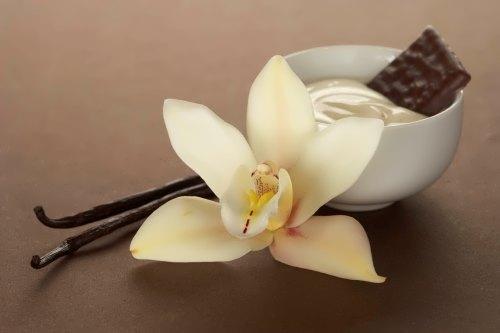 Tasty vanilla