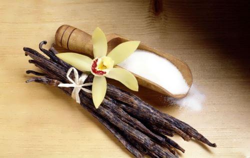Vanilla – delicious thing