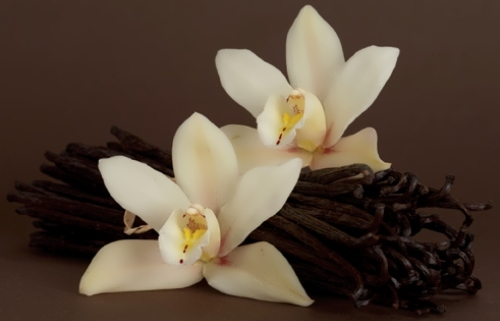 Wonderful Vanilla