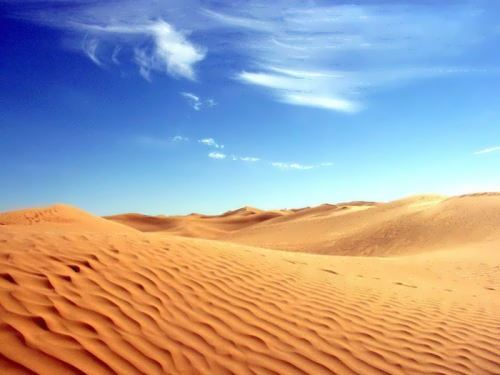 Wonderful desert