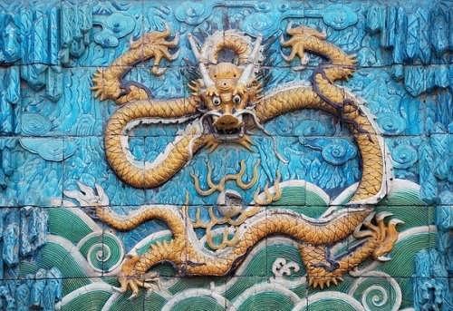 Wonderful dragon on the wall