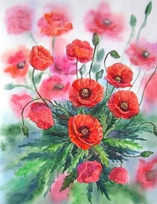 Wonderful poppies