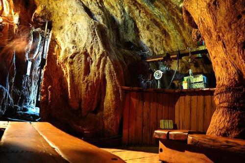 Bar inside baobab