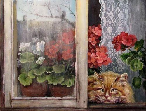 Cat and geranium