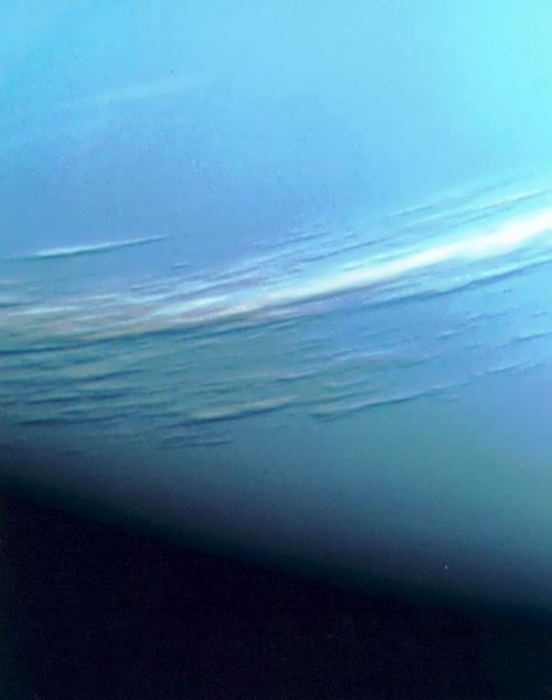 Majestic Neptune