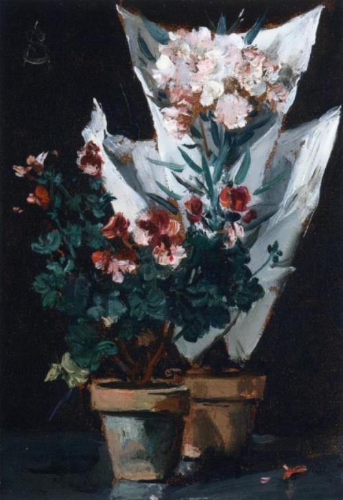 Still Life With Potted Geraniums. Alfred Stevens