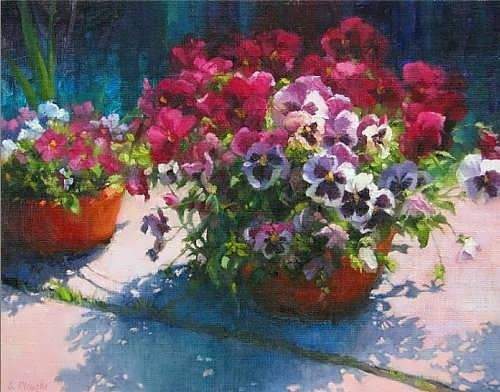 Susan Ploughe. Potted Pansies